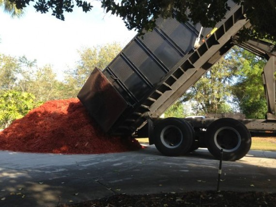 A big truck load of red mulch being dumped