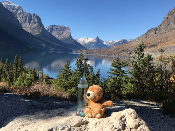 Teddy Bear at St Mary Lake