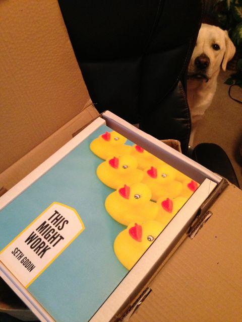 photo of Seth Godin's newest book