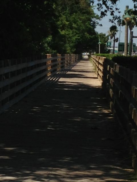 Walking bridge near Celebration, Florida