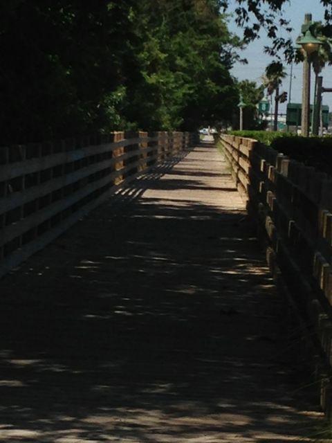 Walking bridge near Celebration, Florida