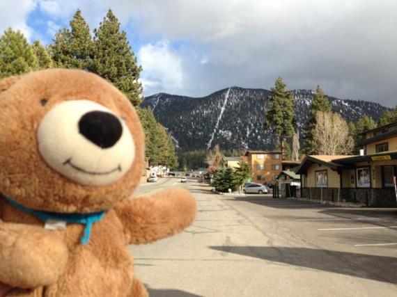 Teddy Bear near Heavenly Ski Resort Lake Tahoe