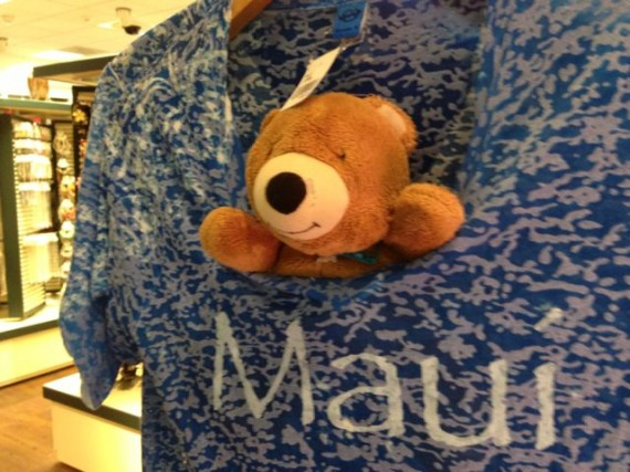 Teddy Beat in Maui tee shirt at airport gift shop