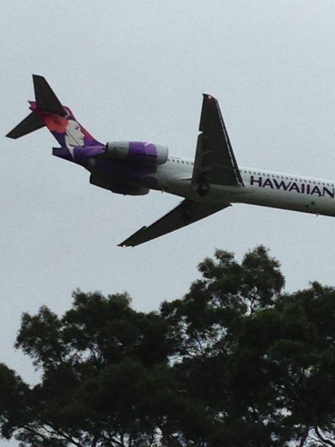 Low flying Hawaiian Air jet over Hilo
