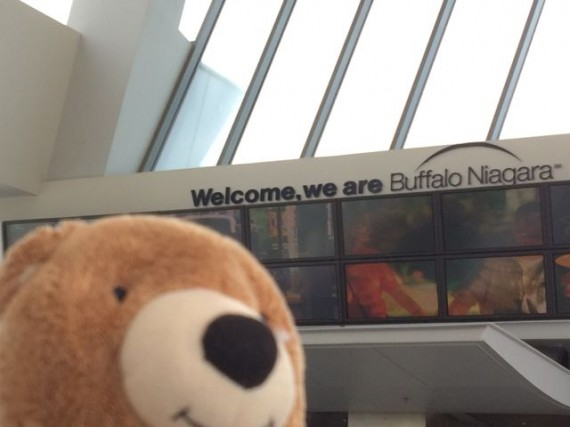 Teddy Bear at Buffalo - Niagara airport