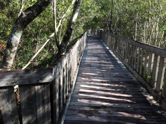 Tibet Butler Nature Preserve in Orlando