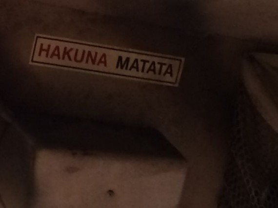 Hakuna Matata slogan in Kilimanjaro Safari vehicle