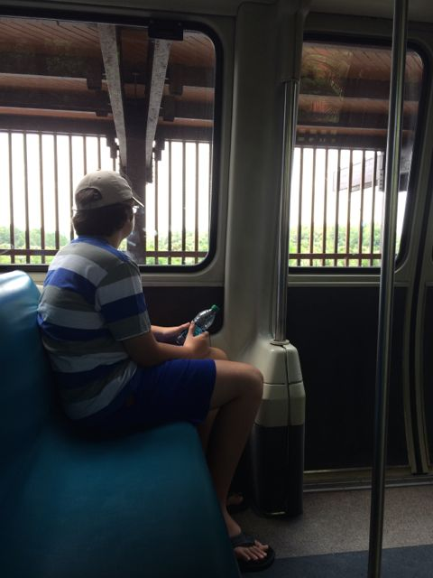 Teenager in Disney monorail