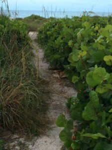 Path to Sanibel Island beachfront