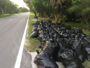 Piles of trash bags on West Gulf Drive in Sanibel