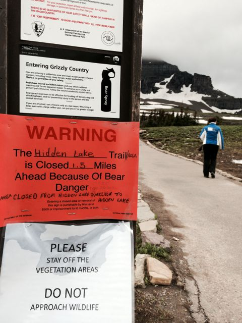 Hidden Lake Trail Grizzly Bear warning sign posted