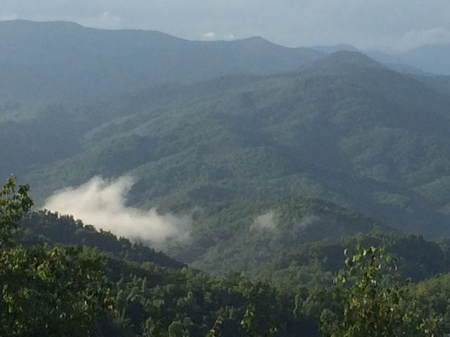 View looking north from atop Shumont Mountain, near Asheville, NC
