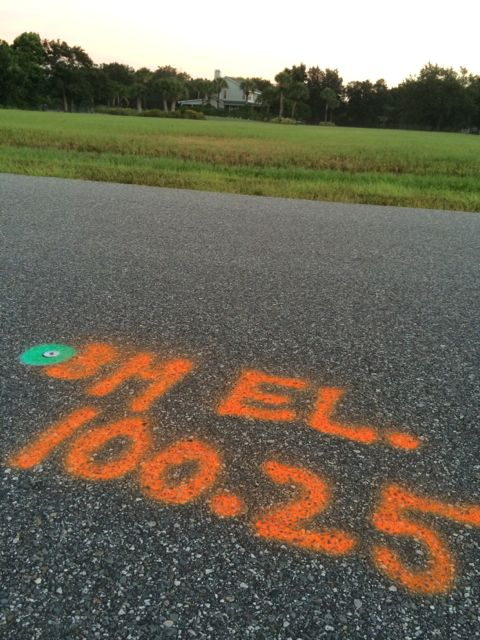 Survey marker notes spray painted on road