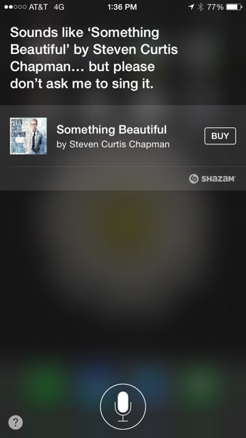 Steven Curtis Chapman song, Something Beautiful