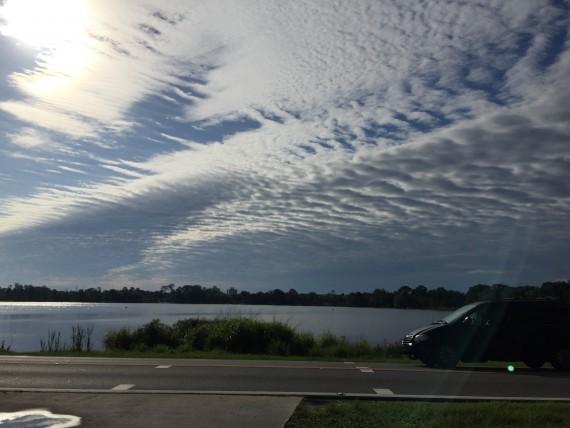 Orlando suburban skyline
