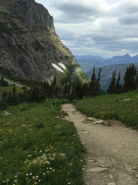 Highly Trail near Logan Pass