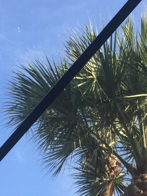 Looking up from pool raft