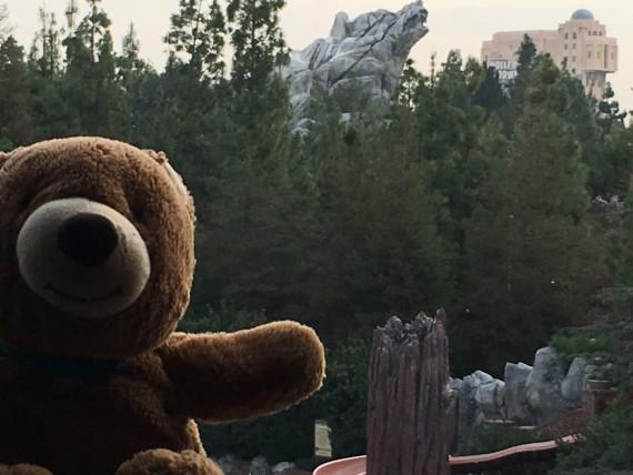 Disney's Grand Californian Hotel room view
