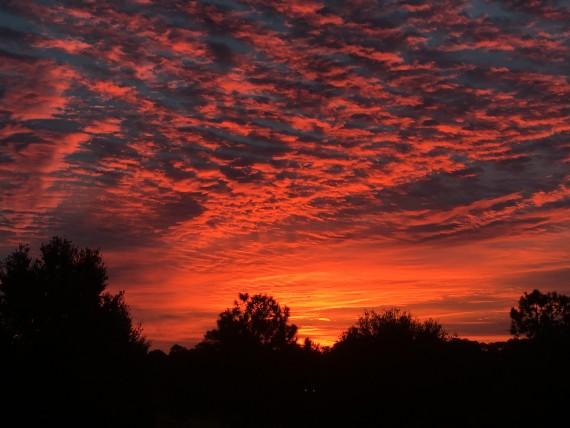 Brilliant Orlando sunrise