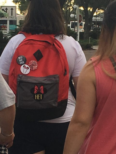 Disney Fanatic backpack