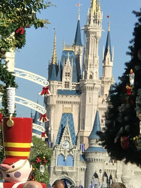 Magic Kingdom Christmas tree 2016