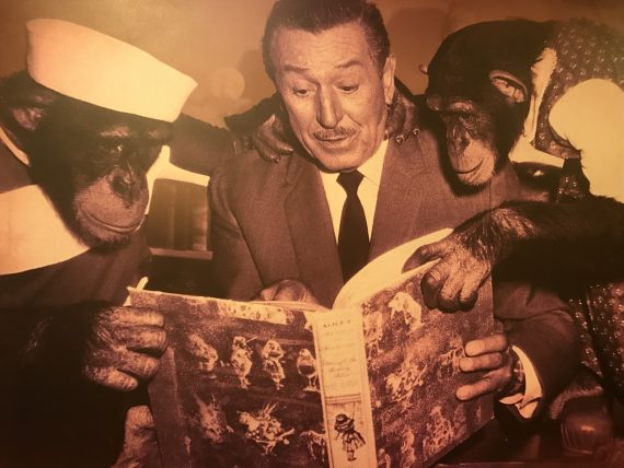 Walt Disney and two Chimps