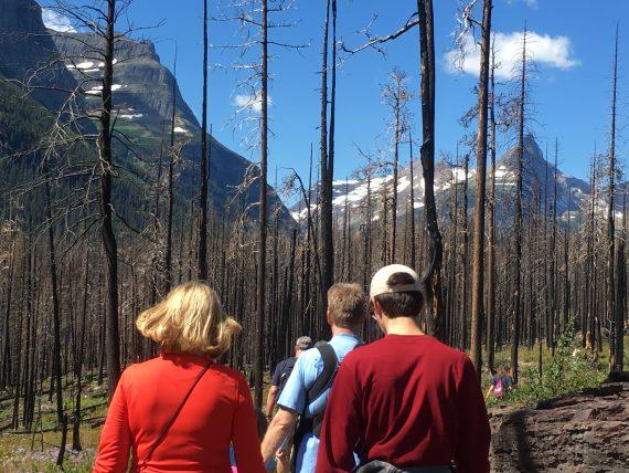 Glacier national Park hiking trial