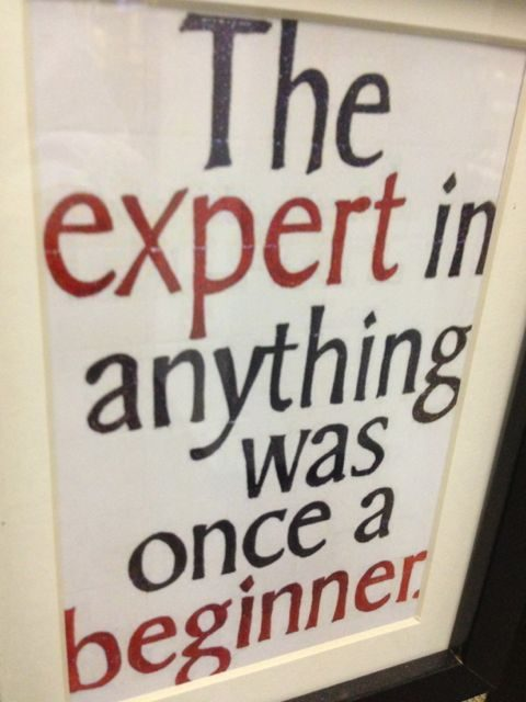 Experts make mistakes