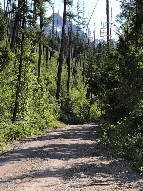 North Lake McDonald Road