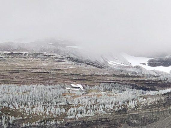 Snow at Logan Pass