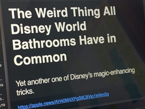 Disney bathroom article