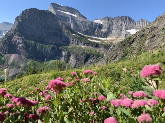 Grinnell Glacier hike 2019