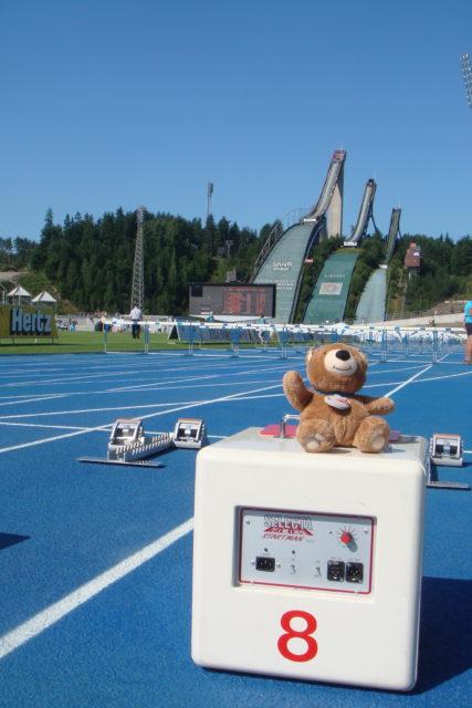 teddy bear and three Finnish ski jumps
