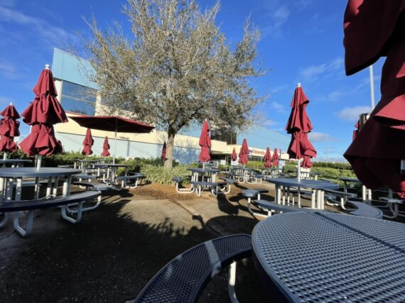 Outdoor seating area at Disney University